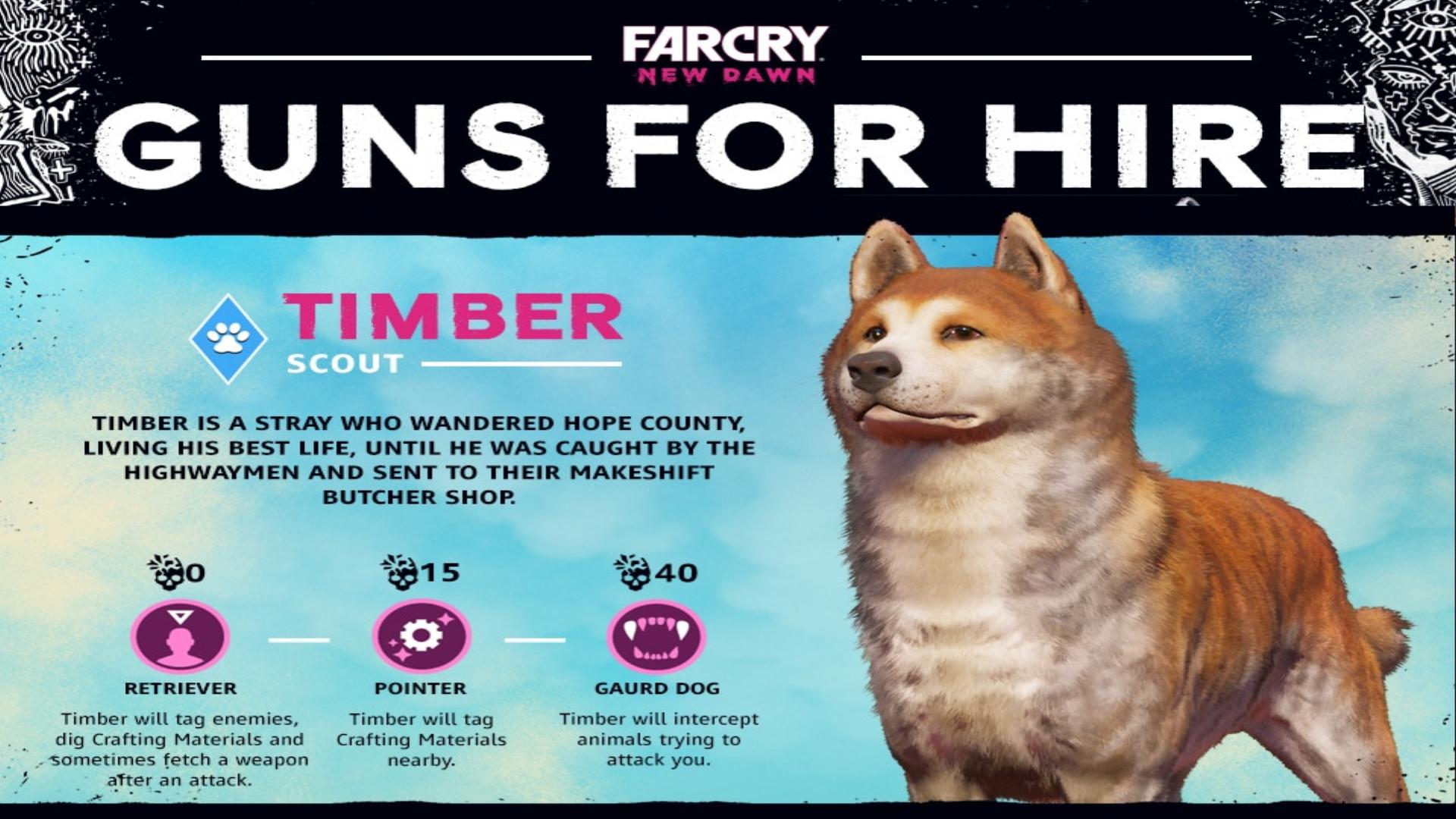 Far Cry New Dawn Best Guns For Hire Nichstaroni